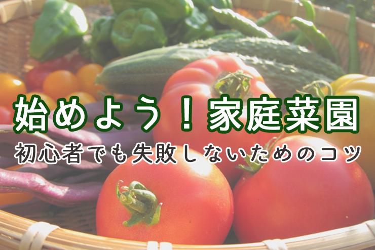 始めよう!家庭菜園