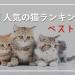 【2019年版】猫の人気ランキング